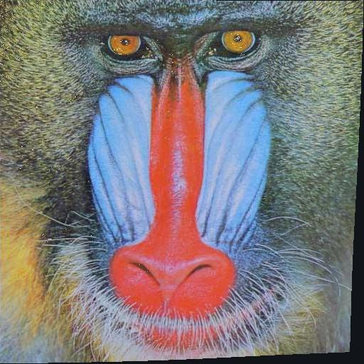 Registered mandrill